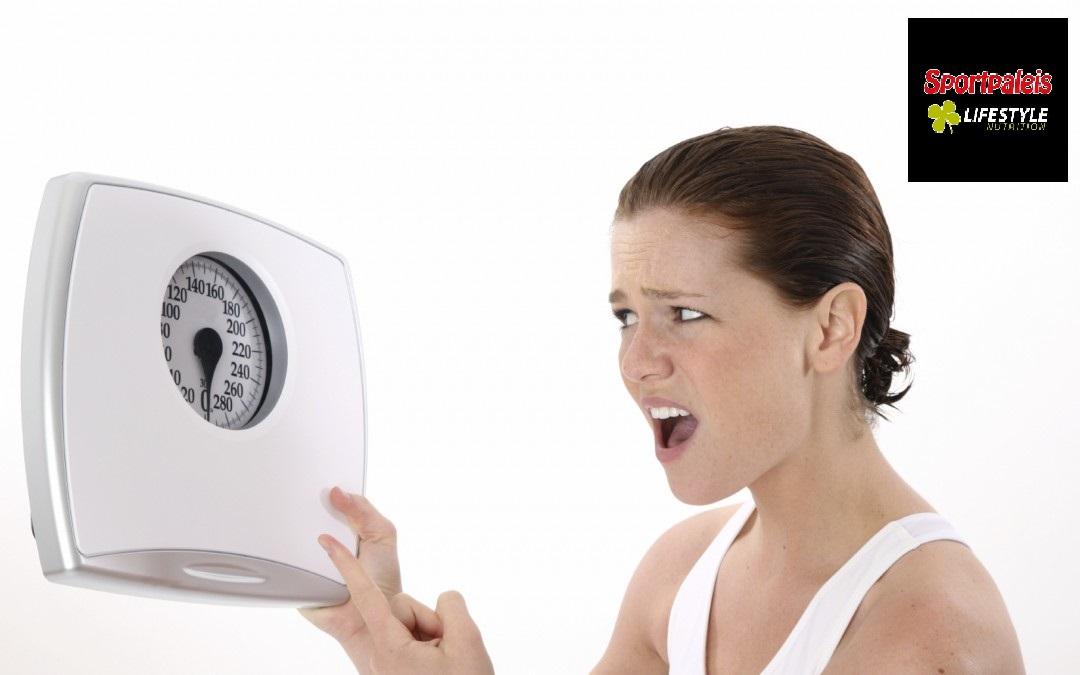Het werkweek dieet